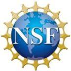 nsf1-150x150